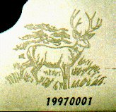 Etch Engrave Receiver Side with a Deer